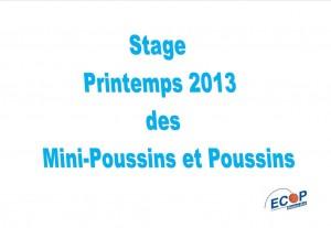 Stage Printemps 2013